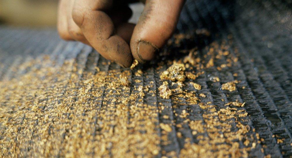 Добыча золота с помощью дражных ковров старательских