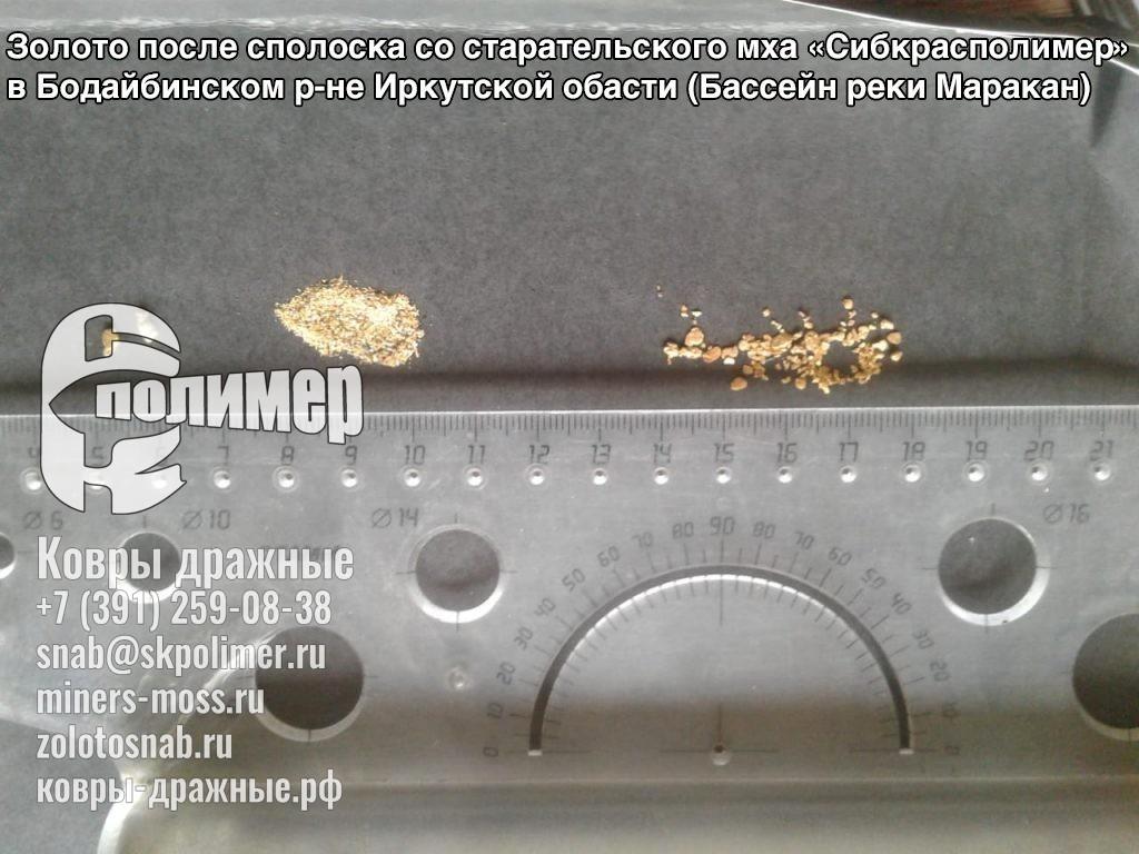 Эксплуатация дражных ковров и старательского мха в Бодайбинском р-не Иркутской обасти (Бассейн реки Маракан)